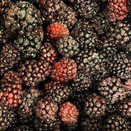 Frozen Blackberries 500g