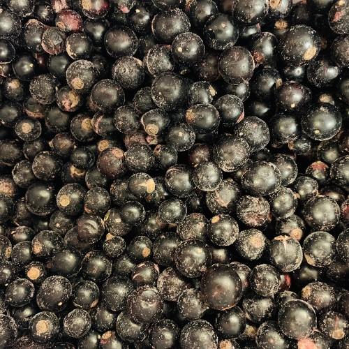 Frozen Blackcurrants 500g